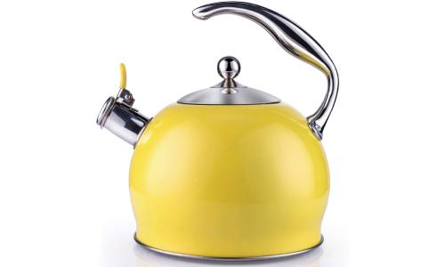 Susteas Tea Kettle